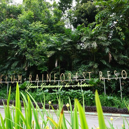 Belum Rainforest Resort: photo0.jpg