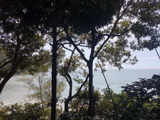 Tropical Spice Garden: Views through the jungle trees to the sea