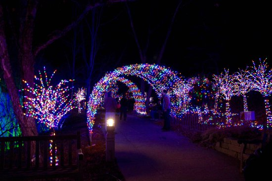 Minnesota Landscape Arboretum: Tunnel of Lights