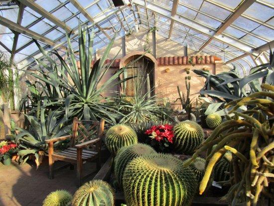 Highland Botanical Park And Lamberton Conservatory The Desert Room
