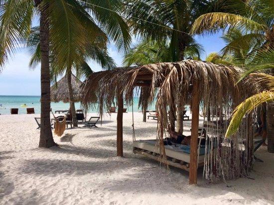 Holbox Hotel Casa las Tortugas - Petit Beach Hotel & Spa: Mandarina view