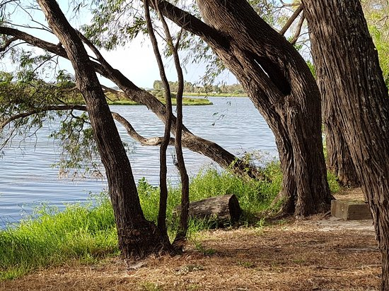 Wonnerup, Australia: 20171217_065254_large.jpg