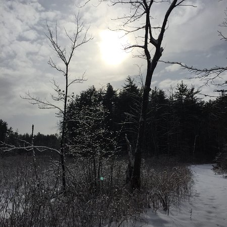 Auburn, NH: Christmas Day snowshoe outing