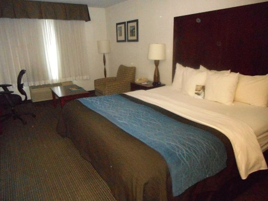 Comfort Inn & Suites Portland International Airport Photo