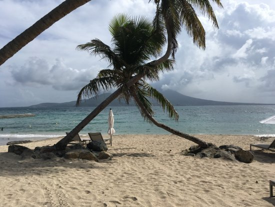Costa Sur, Saint Kitts: Palm tree and Nevis from Banana Bay Beach, St. Kitts