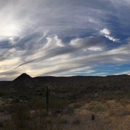 Desert Wolf Tours: photo1.jpg