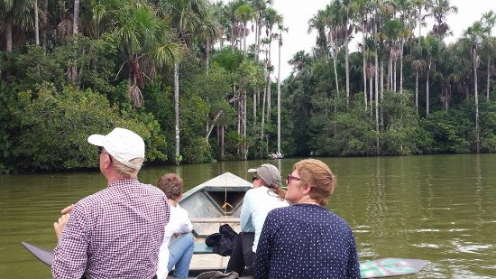 Tambopata Giant Otter Expeditions