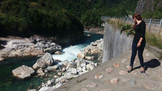 Queulat National Park照片