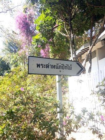 Phu Phan, Tailândia: IMG_25601224_123747_large.jpg