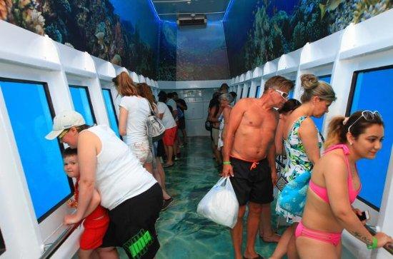 Safari semi sous-marin