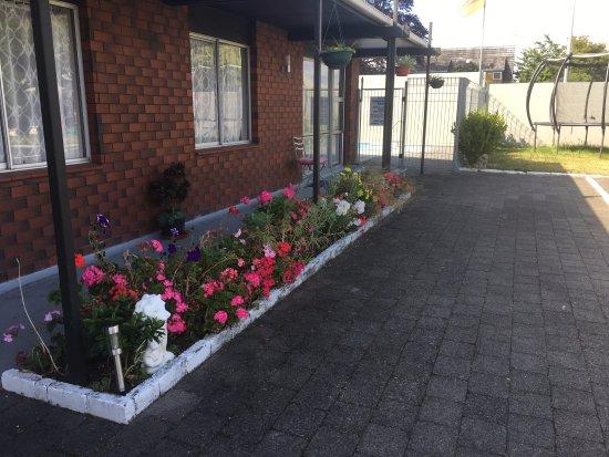 Red Rock Thermal Motel: garden