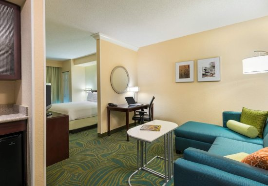 Springhill suites fort myers airport updated 2017 hotel for Rooms to go kids fort myers