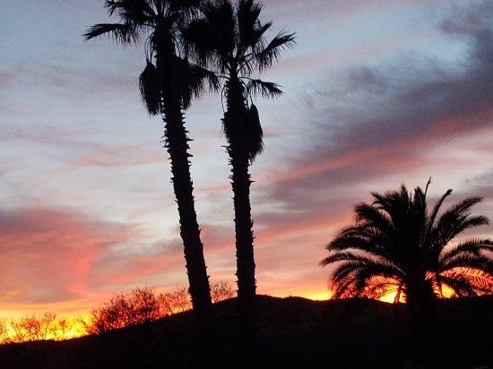 Sasabe, AZ: 20171223_174934_large.jpg