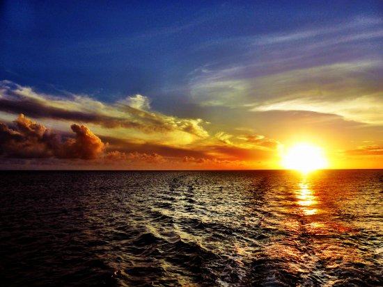 Paradise Taveuni Resmi