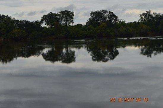 Zimbabue: VEGETATION REFLECTION ZAMBEZI RIVER