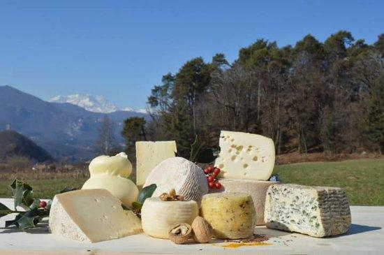 Bolzano Novarese, Italia: Azienda Agricola L'Agrifoglio