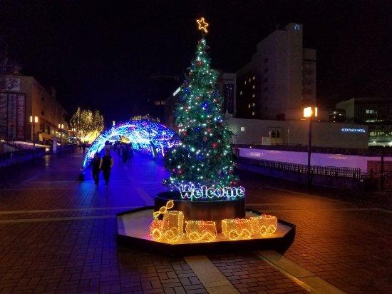 Keio Plaza Hotel Tama Review