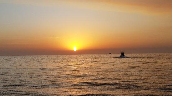 Newport Landing Whale Watching : Sunset at Newport