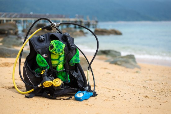 Tioman Dive Centre: children as young as 8 yrs old can try diving!