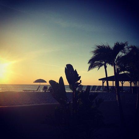 Coquina On The Beach: photo2.jpg