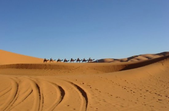 Karim Transport