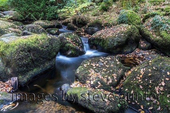 Manaton, UK: A view of the falls on our walk around the site