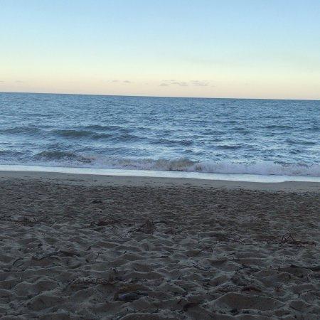 Alamanda Palm Cove by Lancemore: photo1.jpg