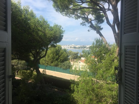 Hotel du Cap-Eden-Roc : Lovely view