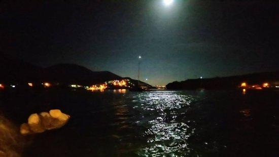 Zaton, Croazia: DSC_0115_large.jpg
