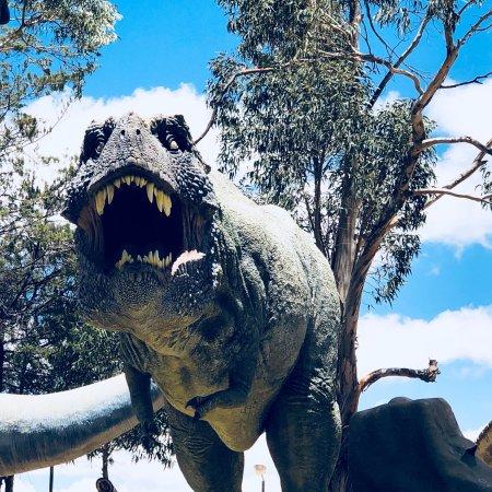 Dinosaur Tracks (Cal Orck'o): photo4.jpg
