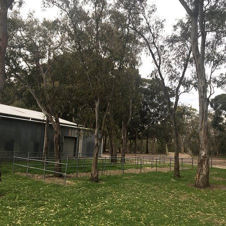 Dandenong, Αυστραλία: Greaves Reserve