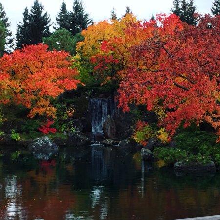 Nikka Yuko Japanese Garden: photo2.jpg