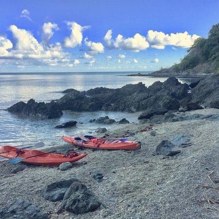 Palm Cove, Australia: photo5.jpg