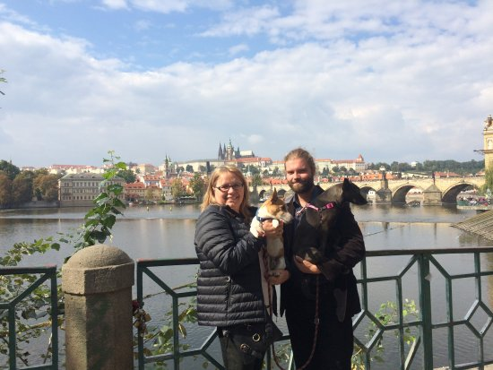 Hostel Downtown: City walk with Mirek and his babies!