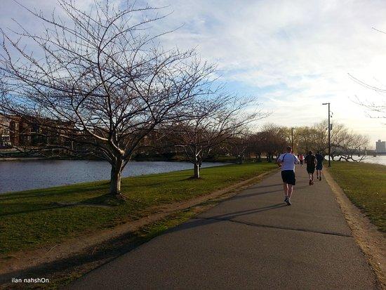 Charles River Esplanade: רצים על גדות הנהר
