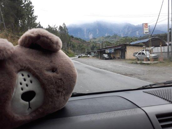 Exotic Borneo Travel Management: Heading towards Kundasang. My fluffy companion can't wait to see Mt Kinabalu up close :)