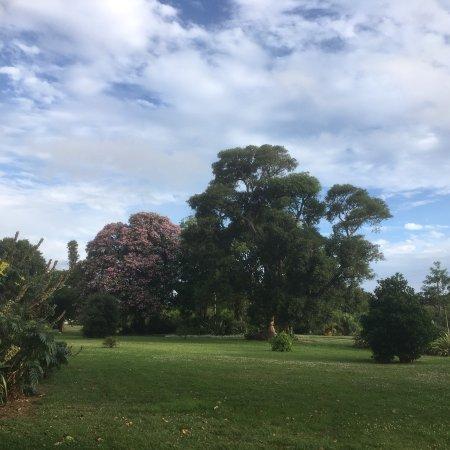 Koroit, Australia: photo4.jpg