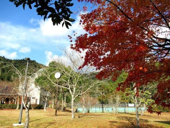 Haruno Fureai Park