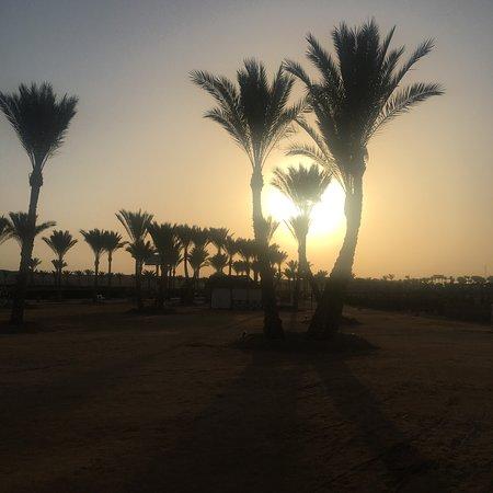 Jaz Dar El Madina 사진