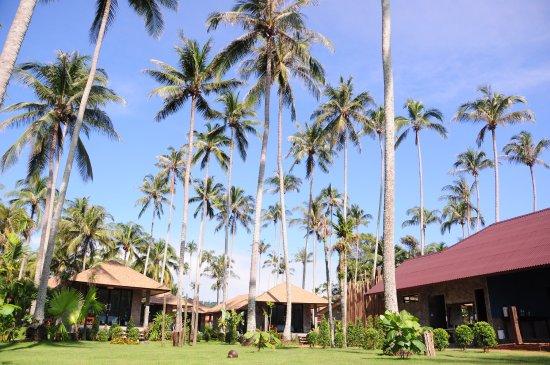 Pictures of Medee Resort - Ko Kut Photos - Tripadvisor
