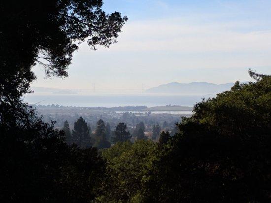 Berkeley Municipal Rose Garden: IMG_20171227_132834_large.jpg