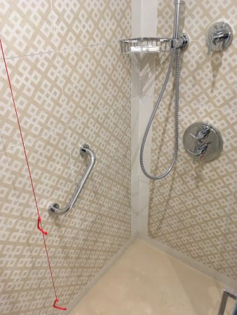 ‪‪The Phoenicia Malta‬: Walk-in shower, grab rail and pull chord‬