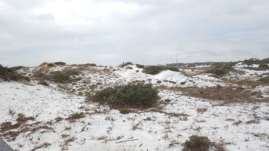 Grayton Beach State Park: This State Park is the best. I was only able to stay 1 night, but I would have stayed longer if