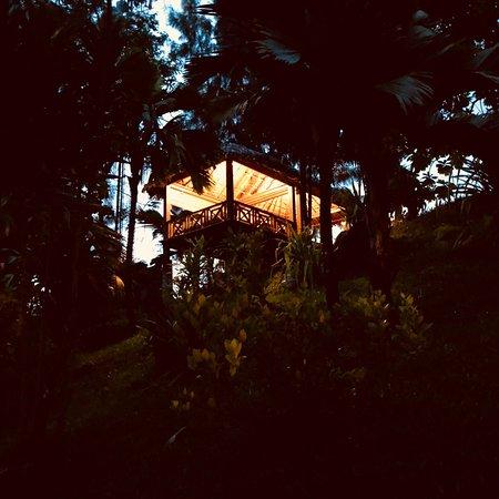 写真Villa Vanilla枚