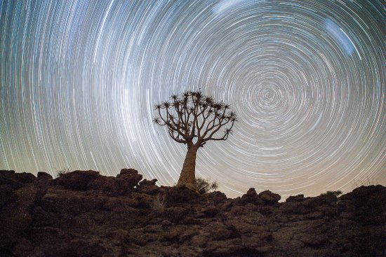 Augrabies Falls National Park, Republika Południowej Afryki: Stars in circle with quiver tree