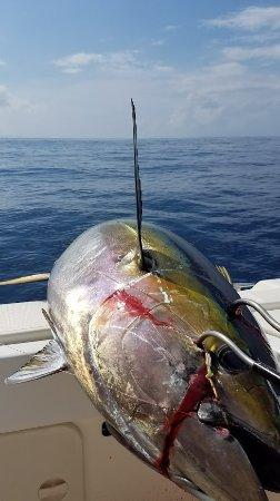 Crazy Tuna & Crazy Good Trip with Capt Shane