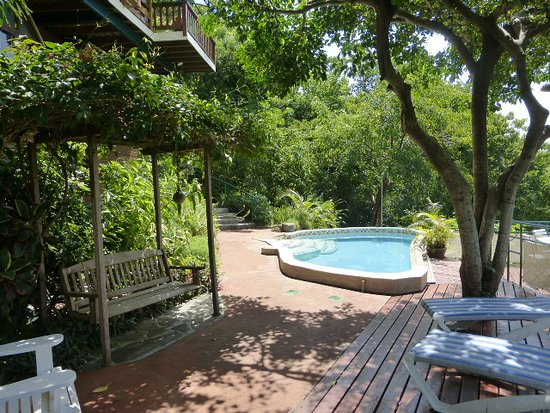 Belmont, Bequia: The wading pool and shaded / sun deck in a garden setting
