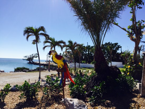 Seascape Motel and Marina: Grounds