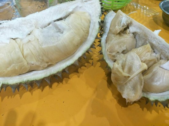 Cari Durian di Medan pasti Ingat Ucok Durian
