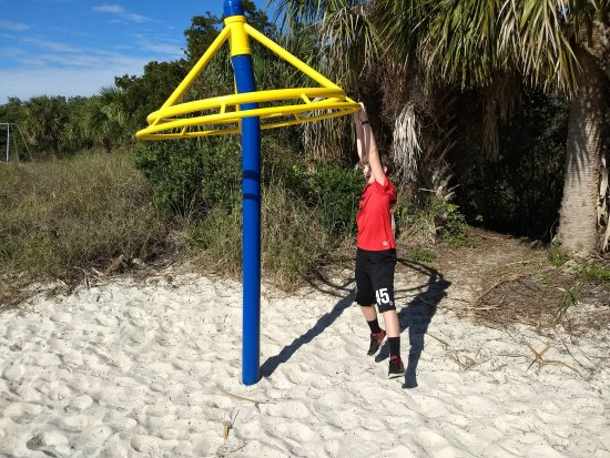 Robert K Rees Memorial Park: The playground is in good condition